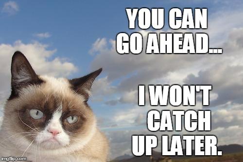 grumpy cat non journey