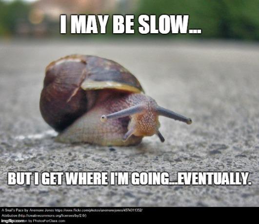 slow snail meme_2